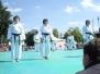 Japantag 2012